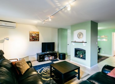 Living room with black couches and green feature walls